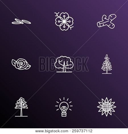 Harmony icons line style set with larch tree, sunflower, camellia and other cumin elements. Isolated vector illustration harmony icons. stock photo