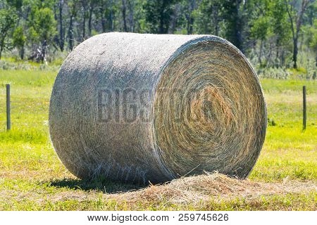 Haybales and rural farmland in the prairies of Southern Alberta Canada stock photo