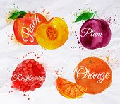 Fruit watercolor peach, raspberry, plum, orange