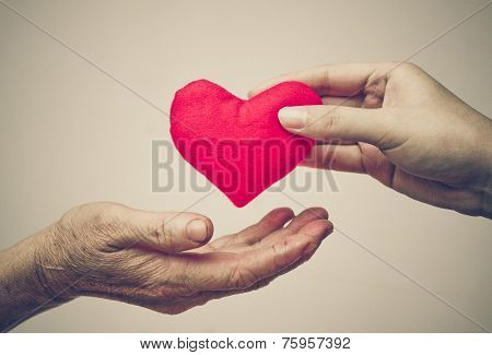 giving love to the elderly