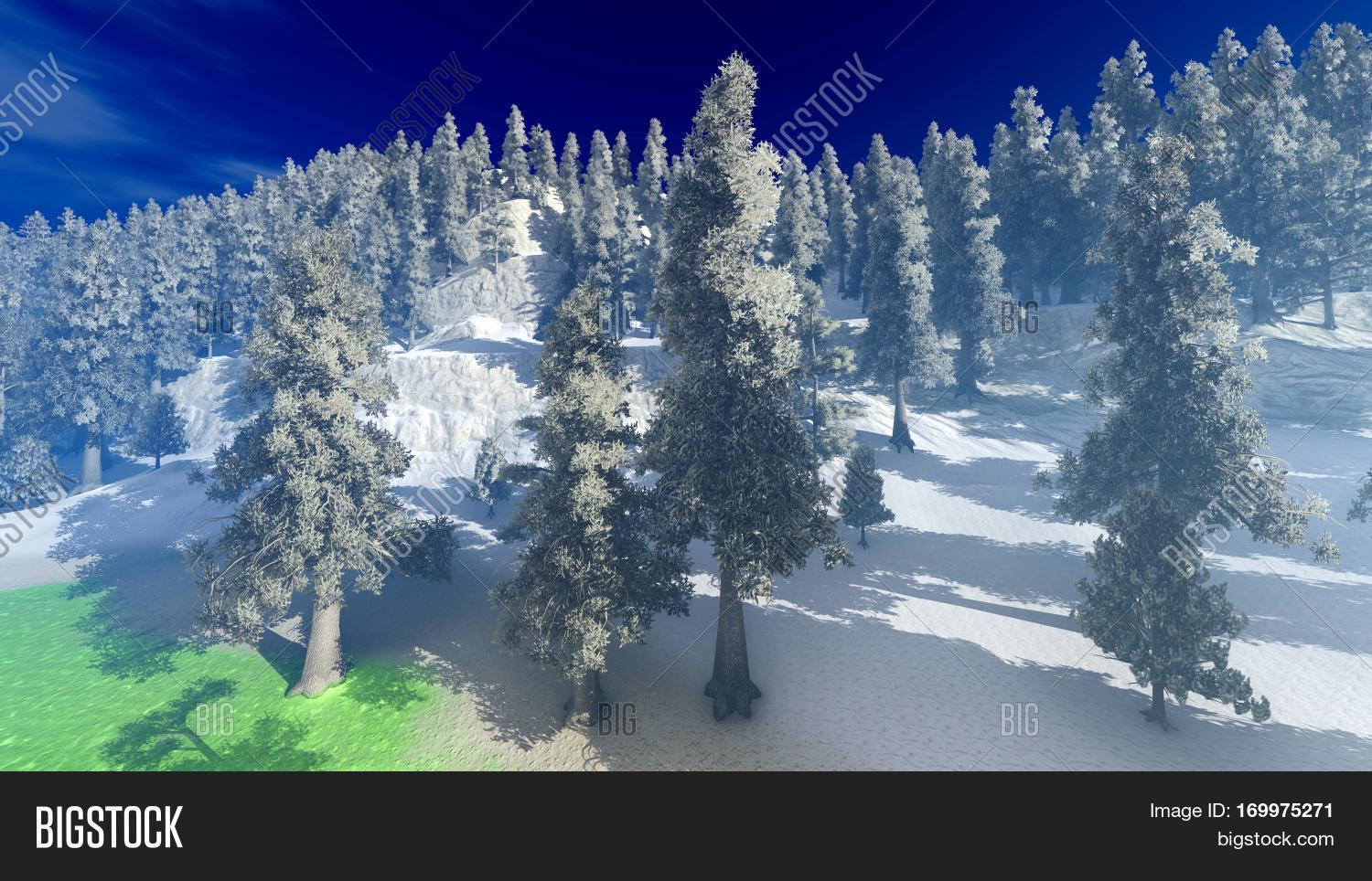 3d rendering,aerea,aerial,america,arial,big,canada,canopy,centre,christmas,colors,conifers,december,drone,environment,fall,forest,green,habitat,high,jungle,lakes,landscape,leaves,mountains,natural,nature,north,photography,pines,plants,rocky,russia,scenic,season,snow,taiga,top,trees,view,wilderness