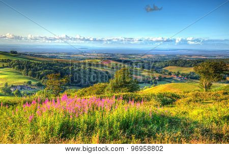 View from Quantock Hills Somerset England UK towards Hinkley Point Nuclear Power Station and the Bristol Channel on a summer evening in vivid colourful HDR like a painting stock photo