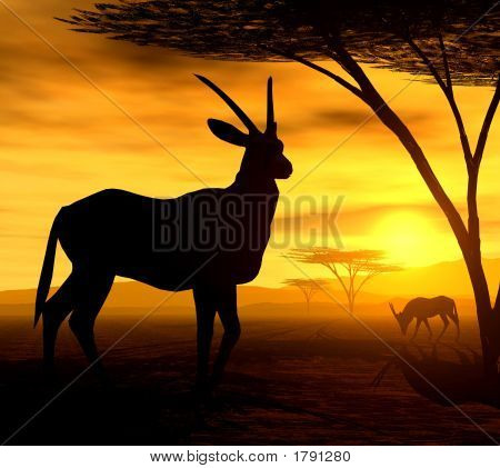 beautiful african sunset illustration of orxy antelopes stock photo