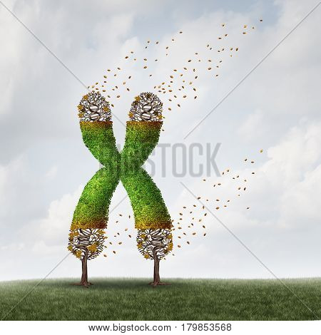 Telomeres length loss with DNA and shortening telomere medical concept as a tree with falling leaves on the end caps of a chromosome as a symbol for aging and living a shorter life due to genetic age damage with 3D illustration elements. stock photo