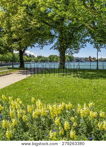 Lake Constance, Bodensee promenade green view in Bregenz, Austria on a sunny June day, the floating stage on the lake in the distance stock photo