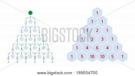 Galton board normal distribution and Pascal's triangle, a triangular array of the binomial coefficients. Each number is the sum of the two directly above. Bean machine, Galton box, quincunx. Vector. stock photo
