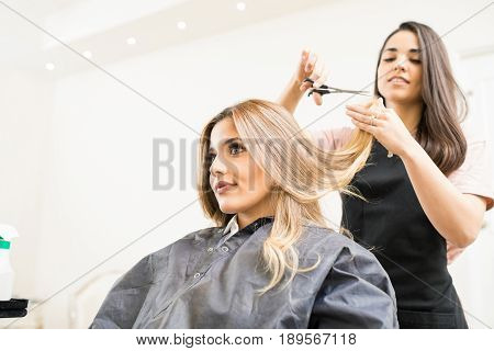 Hairdresser Cutting Some Hair Tips