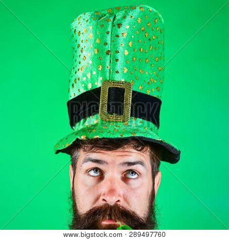 St. Patrick's Day. Bearded man in green hat with clover in mouth. Man in Saint Patrick's Day leprechaun party top hat. Bearded man in costume celebrating St Patrick's day party. Ireland traditional. stock photo