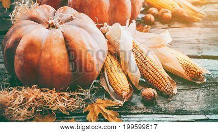 Pumpkin, Squash. Happy Thanksgiving Day Background. Autumn Thanksgiving Pumpkins over wooden backgro