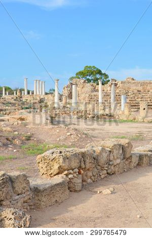 Vertical photography of the ruins of ancient Greek city-state Salamis taken with blue sky above. The archeological site is located near Famagusta in Turkish Northern Cyprus. Popular tourist spot stock photo