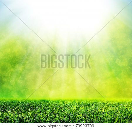 Green spring grass against natural nature blur. Sunny morning light with sparkle and glitter. HD qua